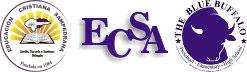 e-ECSA virtual